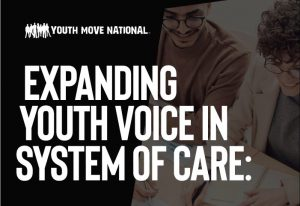 Evaluators: Expanding Youth Voice in System of Care